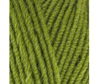 Alize Lanagold Зеленая Черепаха