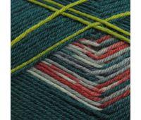 Пряжа Schachenmayr Regia Design Line /Дизайн Лайн/, 4 нитки (09136, Дизайн от Arne & Carlos) 9801270