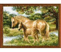"""1258 Набор для вышивания """"Риолис"""" Лошадь с жеребенком 40х30 см"""