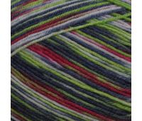 Пряжа Schachenmayr Regia Design Line /Дизайн Лайн/, 4 нитки (03858, Дизайн от Arne & Carlos) 9801270