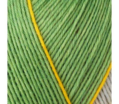 Пряжа Schachenmayr Regia Design Line /Дизайн Лайн/, 4 нитки (09095, Дизайн от Arne & Carlos) 9801270, 09095