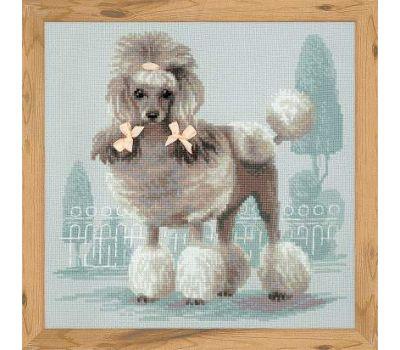 """1635 Набор для вышивания """"Риолис"""" Малый пудель 25х25 см, 1635"""